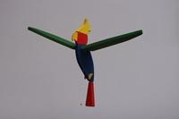 Obrázek Papoušek velký barevný