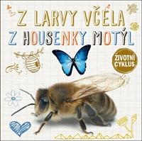 Obrázek Z larvy včela, z kukly motýl - Životní cyklus